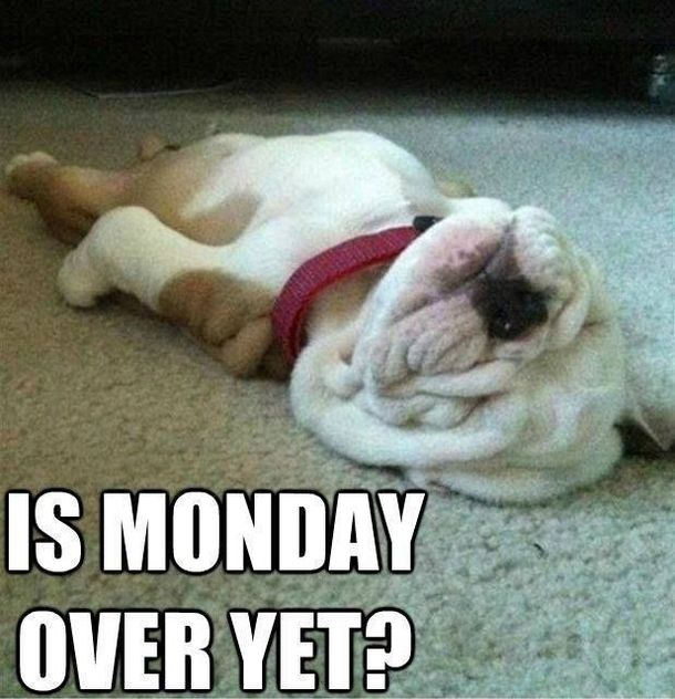 Yes it's Monday again! Monday's can be rough but we have 50…