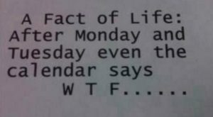 funny quote images about monday | calendar, fact, funny, monday, quote – inspiring p...