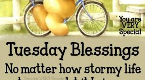 *9169* Tuesday Blessings