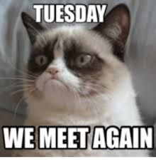 Image result for happy tuesday meme