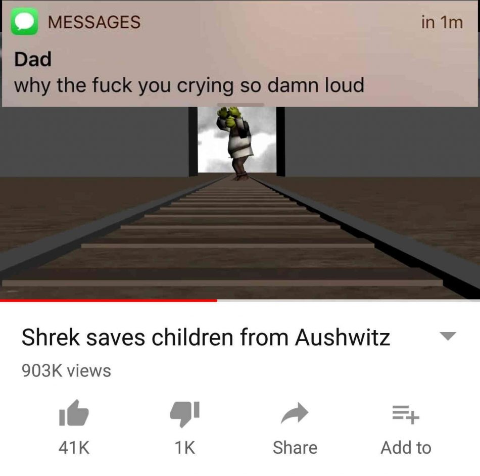 Shrek is my boi