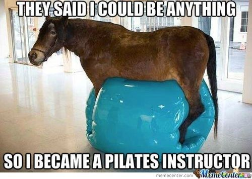 15 Hilarious Horse Memes That Will Make You Laugh All Day