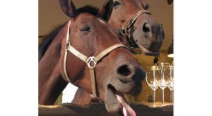 "Funny horses at a bar telling the classic dad joke ""why the long face""…"