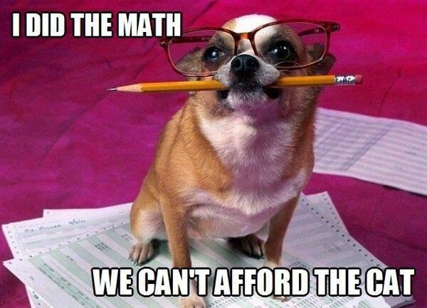 Sometimes money is tight! Funny dog pic with hilarious joke caption. For the best…