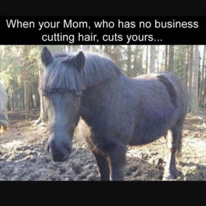 Really Funny Memes Humor That Will Make You Laugh – 23