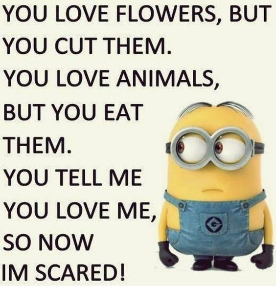 """30 Hilarious Minions Quotes that will make you laugh #Hilarious explore Pinterest""""&g..."""