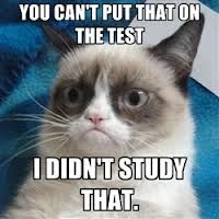 """You can only use what I studied. #GrumpyCat search Pinterest""""> #GrumpyCat #Tard sear..."""