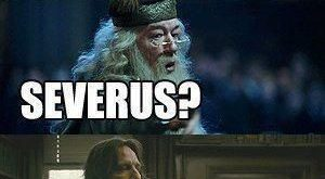 harry potter funny, Donkey just HAS to be in the conversation. xD The only…