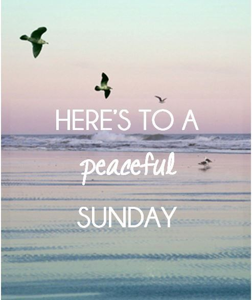 Here's to a peaceful Sunday love day flowers heart friend blessing days of the……...