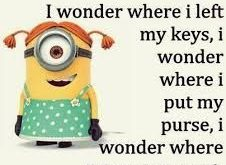 Image result for funny minions quotes arguing with a woman