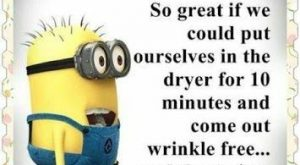 Top 5 Funniest Memes By The – 5, Funniest, Funny Minion Quote, funny minion…