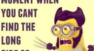 33 of the Funniest Minion Quotes and Pictures
