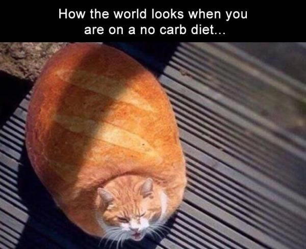 33 Funny Pictures Of The Day
