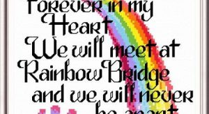 Lets Cross the Rainbow Bridge – cross stitch pattern designed by Ursula Michael. Cat...