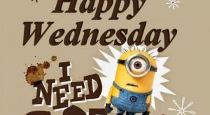 20 Best Good Morning Happy Wednesday Quotes