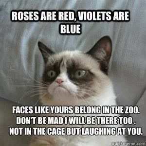 She is good at rhyming | Community Post: 14 Hilarious Grumpy Cat Memes That…