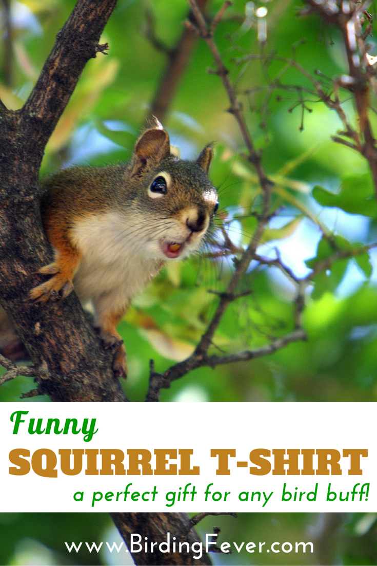 Hilarious squirrel T-shirt. 50/50 cotton/polyester blend. Comes in a range of adult sizes....