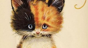 cat and mouse via the ghost of so looks like my Tiffany cat I…