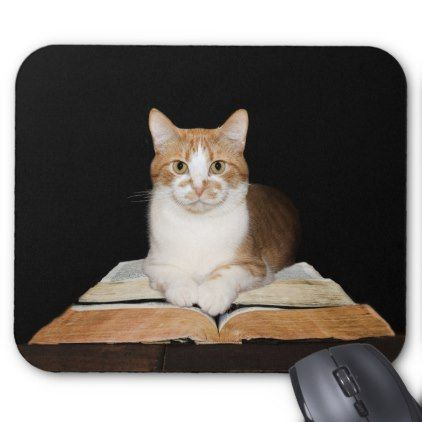Educated kitty cat mouse pad – customize diy
