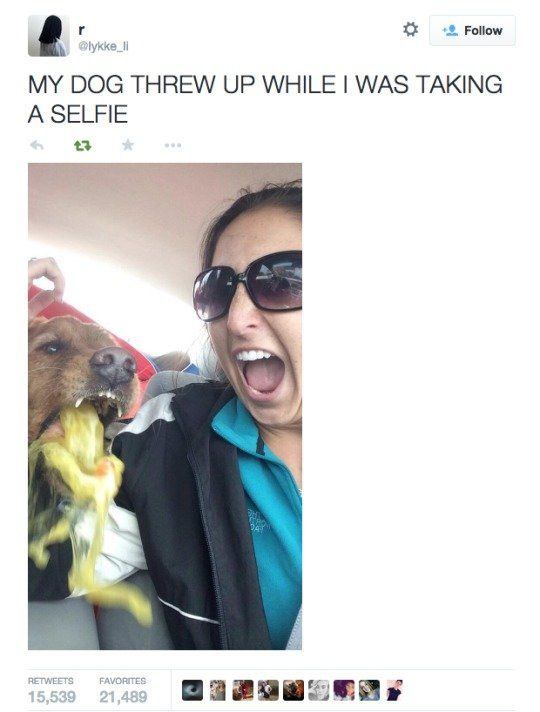 Her dog threw up in mid selfie