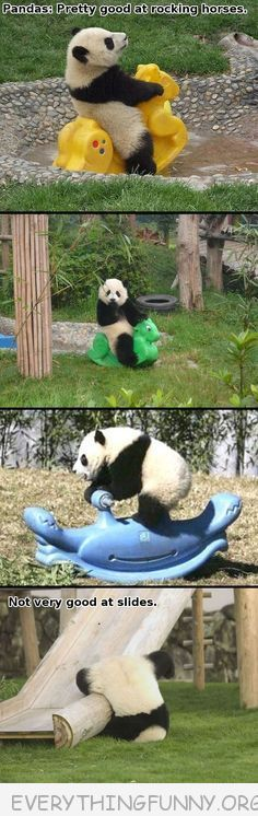 funny caption pandas good at rockers not so good at slides