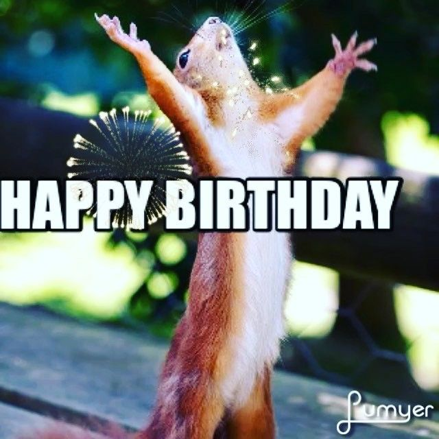 Hey Yall Its My Birthday!!! Some Fun Facts About This Gemini I think squirrel…