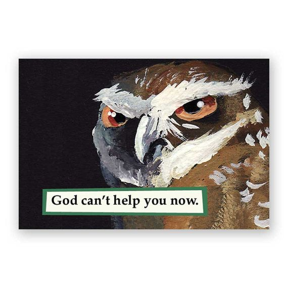 God Can't Help You Now Magnet – Owl – Bird – Humor – Mincing...
