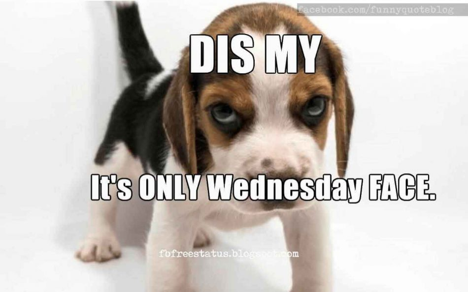 This is my, its only Wednesday face? Funny Wednesday Meme