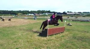 Crosscountry schooling today ! Shame about the fall Bobby was absolutely fantastic despite...