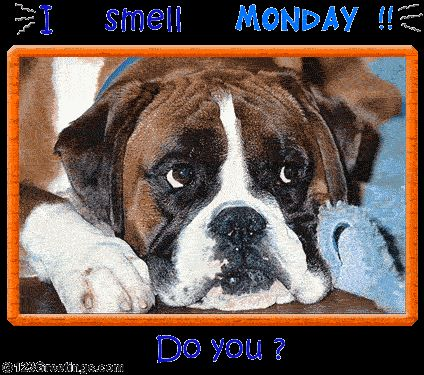 I smell Monday!! Do you??