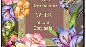 Have a blessed new week ahead. Stay Safe! monday monday quotes happy monday monday…