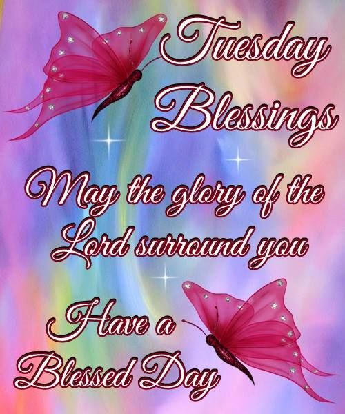 Good Morning, Happy Tuesday, I pray that you have a safe and blessed day!!