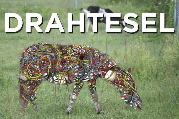 """Sometimes a bicycle is called a """"Drahtesel"""" in Germany, which means """"wire donkey.""""..."""