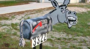 great ideas for mailbox garden – Google Search