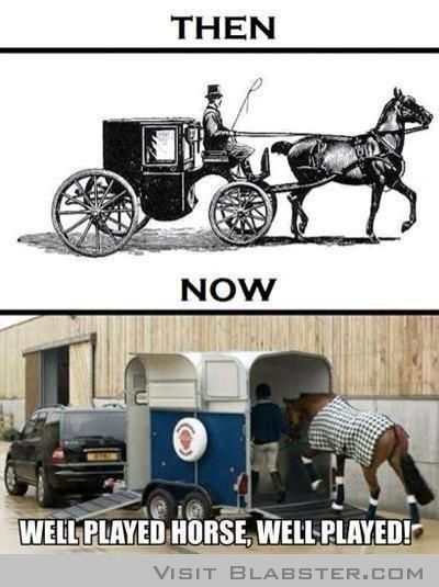 Well played horse funny