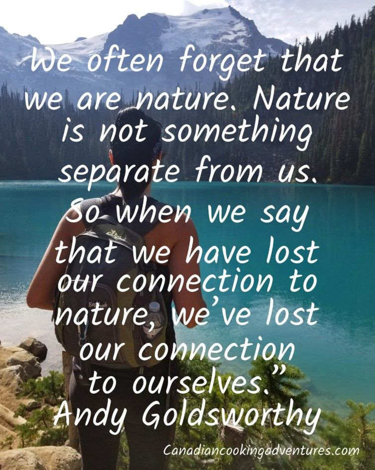 We often forget that we are nature. Nature is not something separate from us.…