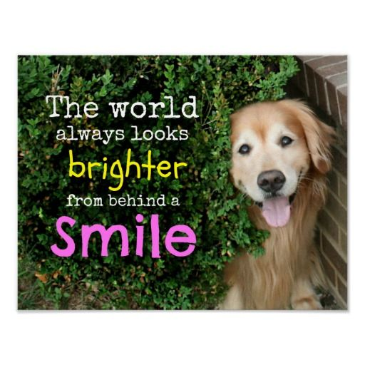Golden Retriever Behind A Smile Print. SOLD to a customer in Lakeland FL :)…