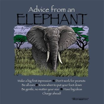 Elephant (wisdom, stability) The elephant has always been revered for its size, intelli-ge...