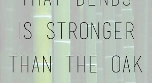 """The bamboo that bends is stronger than the oak that resists."" – Japanes..."
