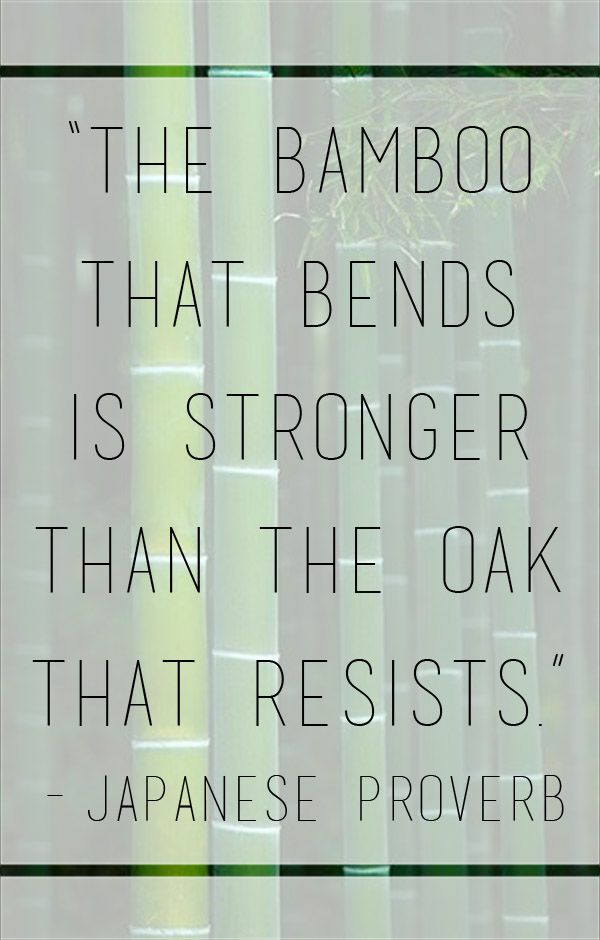 """""""The bamboo that bends is stronger than the oak that resists."""" – Japanes..."""