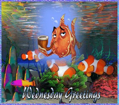 Wednesday Greetings
