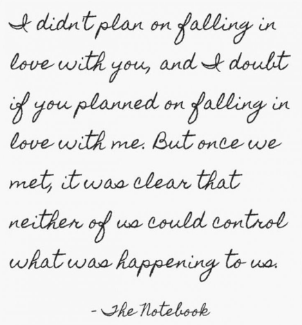 i-didnt-plan-on-falling-in-love-with-you-neither-of-us-could-control-what-was-happening-to...