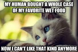 Image result for my human bought a whole case