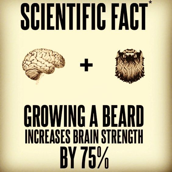 Increase your brain strength! not really a fact – but hey – lets just…