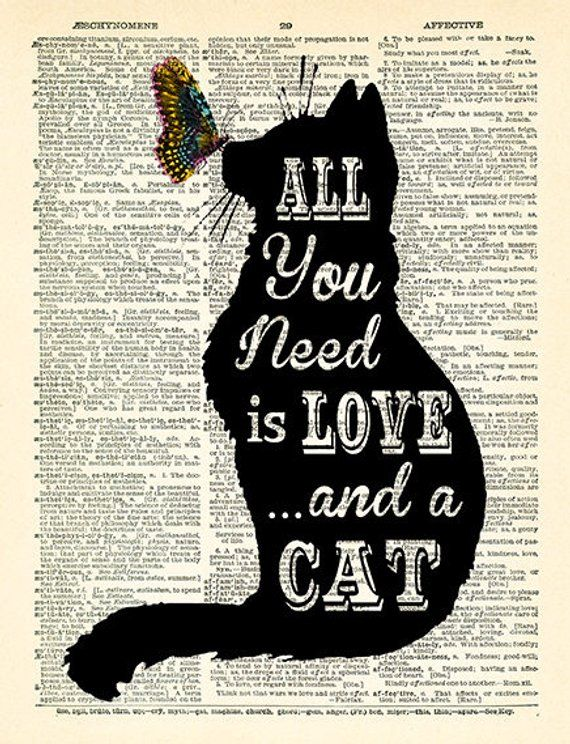 All you need is LOVE and a CAT Quotes Dictionary Art Print