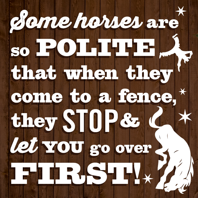 Some horses are so polite! Haha ~ re-pinned by horse and equestrian-themed gifts