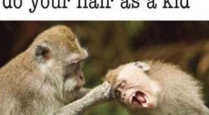 20 Super Funny Pictures
