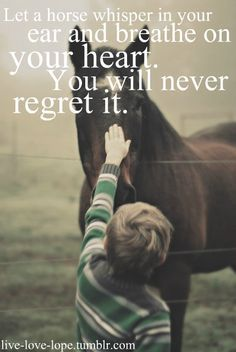 Equestrian Quotes About Boys. QuotesGram