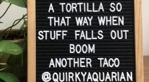 16 Taco Tuesday Letter Board Quotes I eat tacos over a tortilla so that…