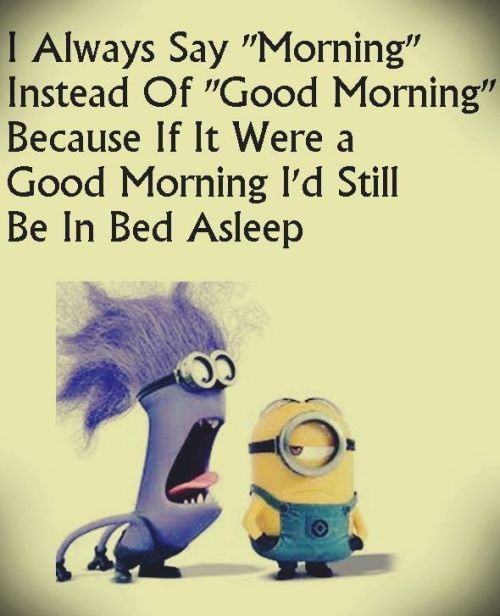 Despicable Me funny minion quotes of the day 019